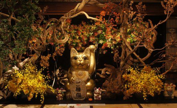 假屋崎省吾の世界×ご縁猫